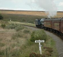 The Sir Nigel Gresley British Railways Number 60007 travelling through the North Yorshire Moors by Graeme Rouillon