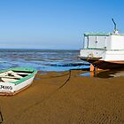 High & Dry, Urangan Boat Harbour, Queensland by Adrian Paul