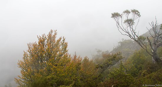 foggy start at cradle mountain by bluetaipan