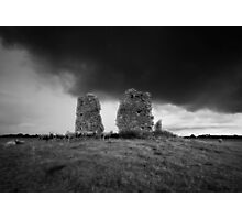 A New Flock Photographic Print