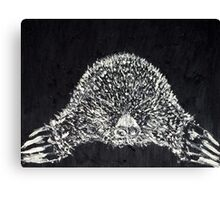 THE MOLE - oil portrait Canvas Print