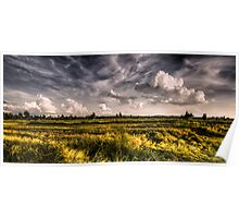Rice fields in the sunset Poster
