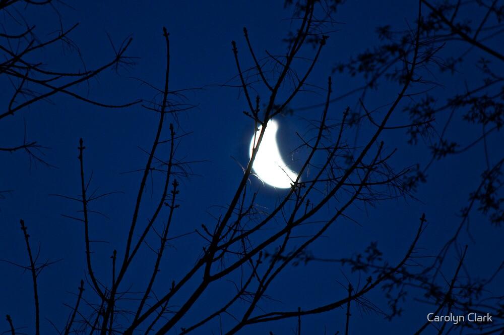 Dawn moon 1 by Carolyn Clark