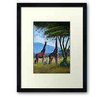 Giraffe chewing sweet leaves  Framed Print