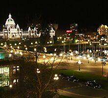 The Legislative Buildings at Night by islandphotoguy