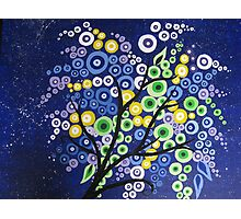 blue green yellow and purple circle tree with stars Photographic Print