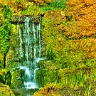 Waterfall in Spring by Steve