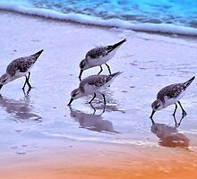 Four Pipers In a Pickle by Donnie Voelker