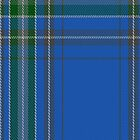 02306 Dallas Clan/Family Tartan Fabric Print Iphone Case by Detnecs2013