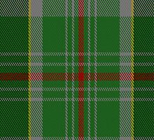 02314 Dalwhinnie Fashion Tartan Fabric Print Iphone Case by Detnecs2013