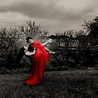 *The Red Dress* by DeeZ (D L Honeycutt)