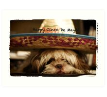 Happy Cinco De Mayo Art Print