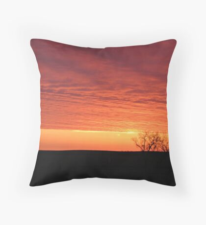 Blazing Plains Throw Pillow