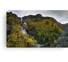 The Big Plateau Creek Drop - Lower Hairy Falls Canvas Print