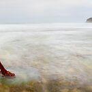 Marie Gabrielle Anchor, Shipwreck Coast, Victoria, Australia by Michael Boniwell
