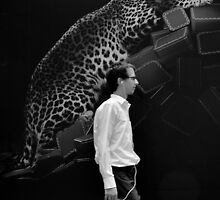 Big cat watching... by David Nendel by Shot in the Heart of Melbourne, 2013