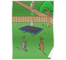 Kangaroo Trampoline Bounce Poster