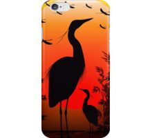 Heron Shape on Stunning Sunset iPhone Case/Skin