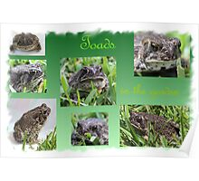 Toads in the Garden Poster