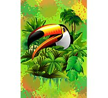 Toucan on Wild Green Jungle  Photographic Print