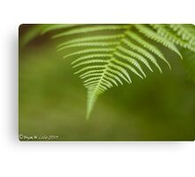 The color Green. Canvas Print