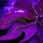 Purple Shake by FloraDiabla