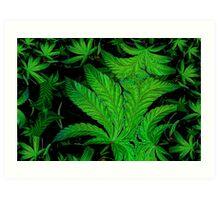 Green Ambition  Art Print