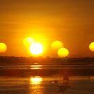 African Sunset #5 by Pauline Adair
