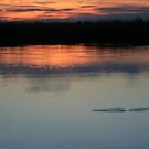 African Sunset #7 by Pauline Adair