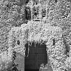 The entrance - Infrared by Hans Kawitzki