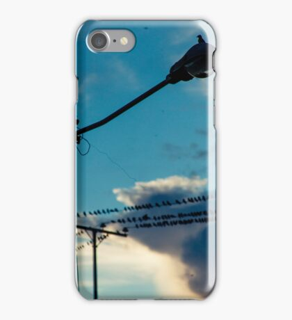 Swallows on the wires 6 iPhone Case/Skin