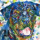 ROTTWEILER - watercolor portrait by lautir