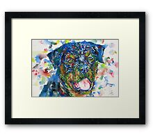 ROTTWEILER - watercolor portrait Framed Print
