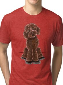 Chocolate Labradoodle Tri-blend T-Shirt