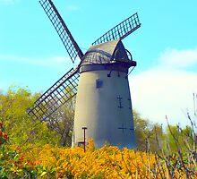 Bidston Windmill 2 by DavidWHughes