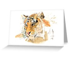 Tiger. The largest feline in the world. Greeting Card