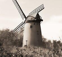 Bidston Windmill Mono by DavidWHughes