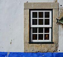Window and Fish by Brendan Buckley