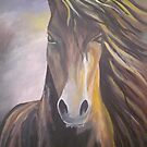 Brishen the Gypsy Horse by Dawn  Hawkins
