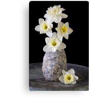 Spring Daffodils Canvas Print