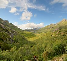 Norwegian mountain landscape by DmiSmiPhoto