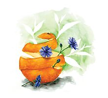 Earl Grey (with blue cornflower and orange peel) Photographic Print