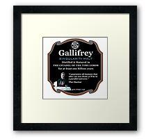 Doctor Who - Gallifrey Singularity Malt Framed Print