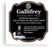 Doctor Who - Gallifrey Singularity Malt Canvas Print