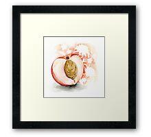 White Peach Jasmine (with chrysanthemum) Framed Print