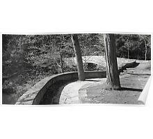 Sackett Footbridge, Spring 2013 Poster