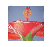 Tropical Red Hibiscus Flower Against Blue Sky Scarf