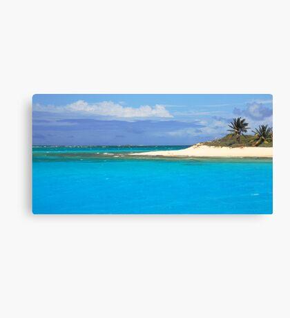 Sandy Island Beach and Turquoise Sea  Canvas Print