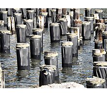 Pilings, East River Photographic Print