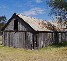Slab Hut, Cecil Plains Homestead, Qld, Australia by Margaret  Hyde